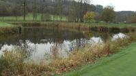 Fotografie 3-jezirko-na-golfovem-hristi_original.jpg