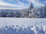 Fotogalerie Zimní fotografie, foto č. 19