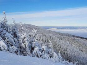 Zimní fotografie