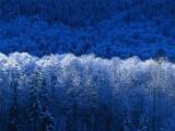 Fotogalerie Zimní fotografie, foto č. 14