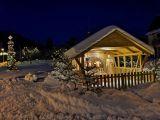 Fotogalerie Zimní fotografie, foto č. 8